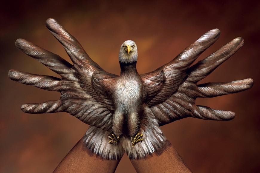 eagle-bird-handmade-creative-italian-artist-guido-daniele-guido-daniel-fingers-hand
