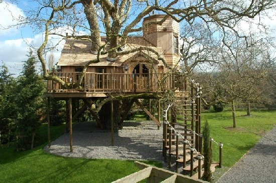Peachy Cool Treehouses From Around The World Cool Things Collection Largest Home Design Picture Inspirations Pitcheantrous
