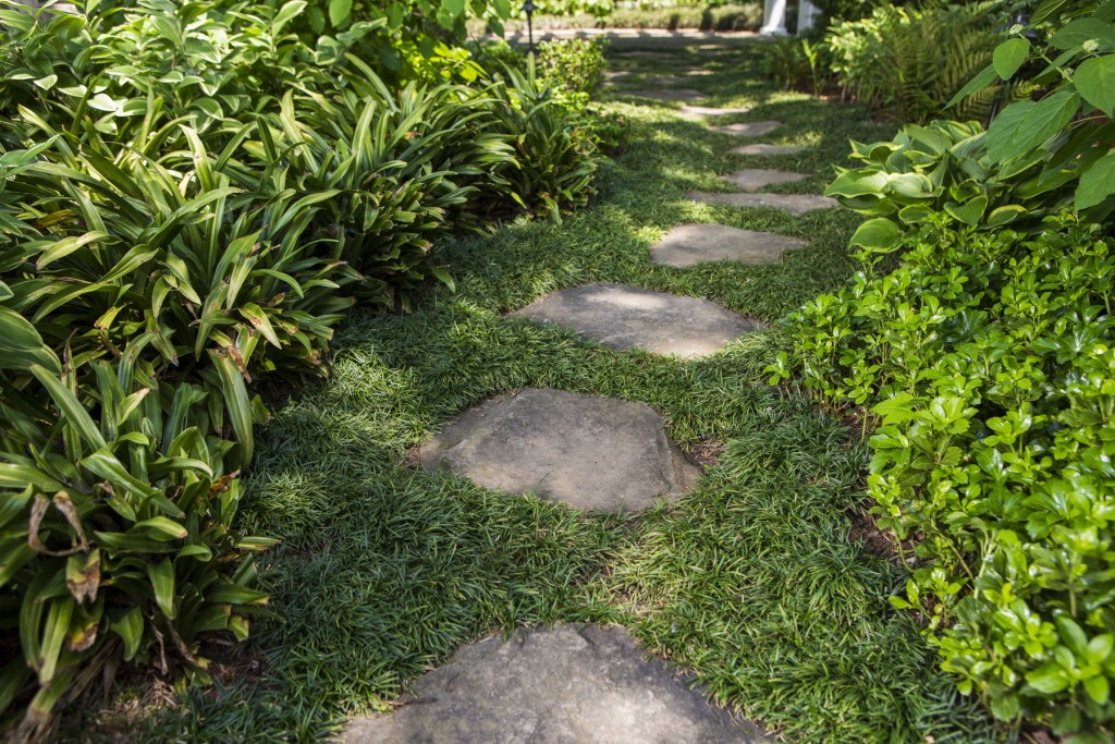 Garden stepping stone ideas for Stepping stone designs garden