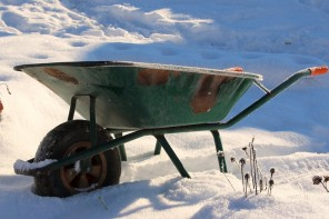 Garden Get-up-and-go: Keep Your Gardening Motivation in Winter