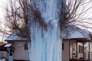 Cool picture of fire hydrant that bust in sub-zero temperature