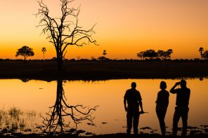 Making your dream African Safari holiday come true